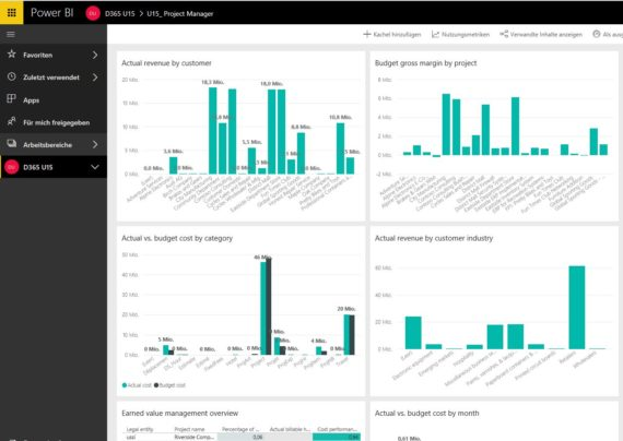 Power BI Dashboard für Projekt Manager